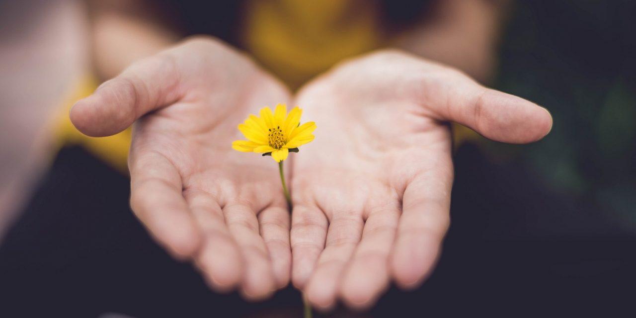 Nőnapra virág helyett 365 nap tisztelet!